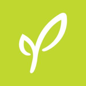 Palmer Leaf