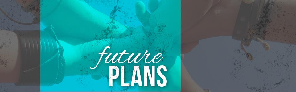 USA Future Plans